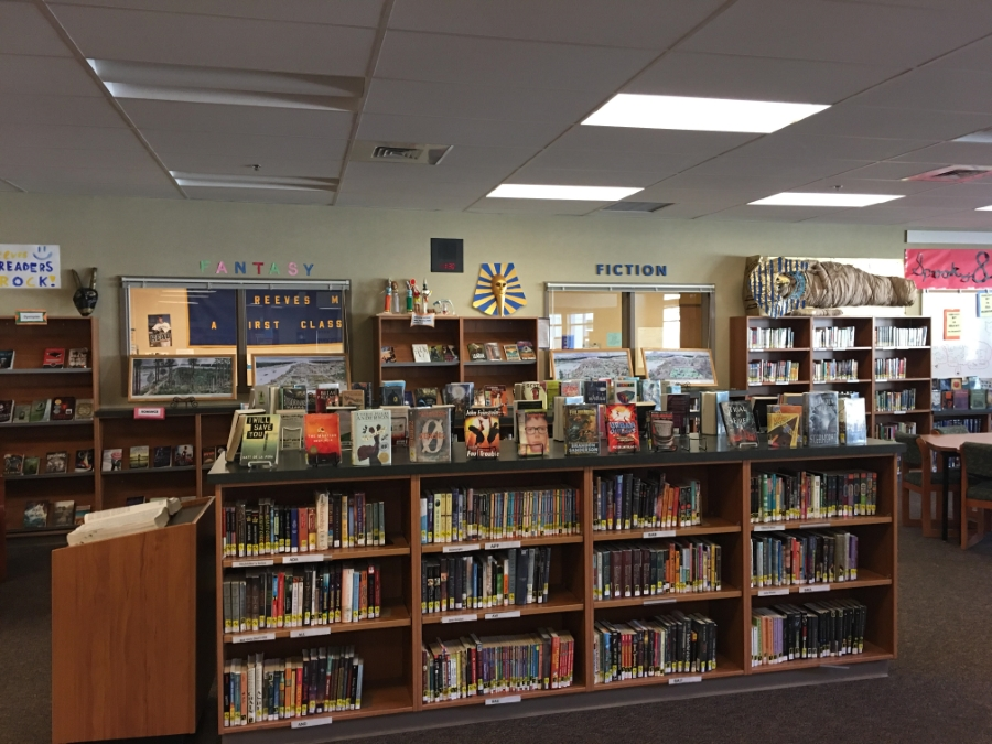 picture of fiction bookshelves in library